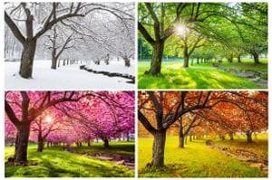 Anglické slovíčka - Ročné obdobia po anglicky